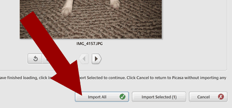 screen shot - import all into Picasa 2