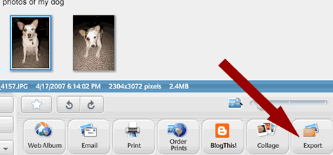 screen shot - click the export button