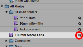 editing-the-smart-album-settings.png